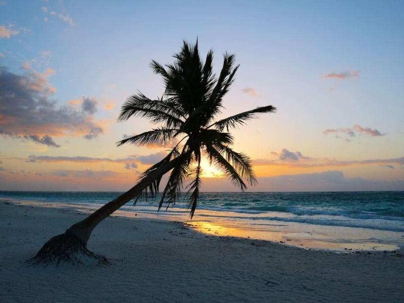 clima playa del carmen por hora