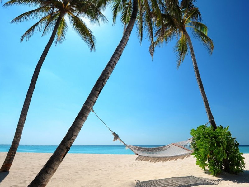 temporada seca playa del carmen