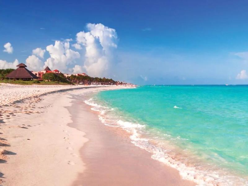 Sargazo Playa del Carmen esquivarlo