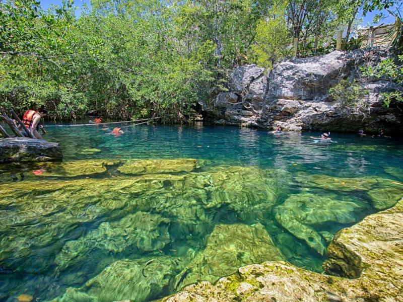 cenotes Playa del carmen cenote cristalino