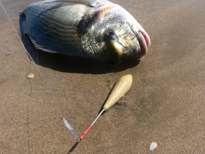pesca en la playa de las catedrales fondo